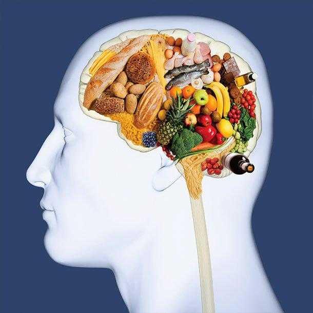 Mind диета для мозга — 10 продуктов, входящих ее состав и рацион меню на неделю, а также полезные свойства