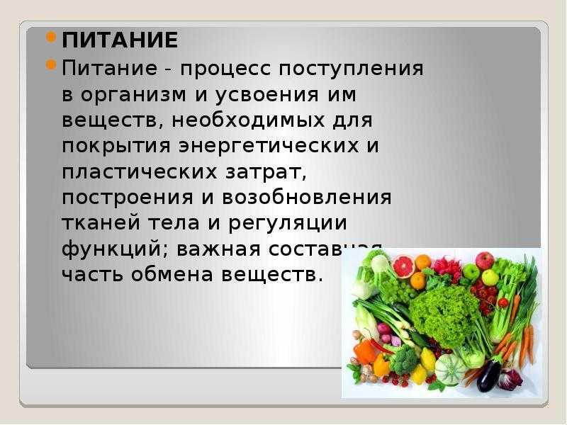 Фактор питания влияет на здоровье человека