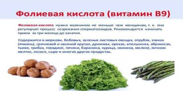 Фолиевая кислота: что это такое, для чего нужна, полезные свойства витамина В9
