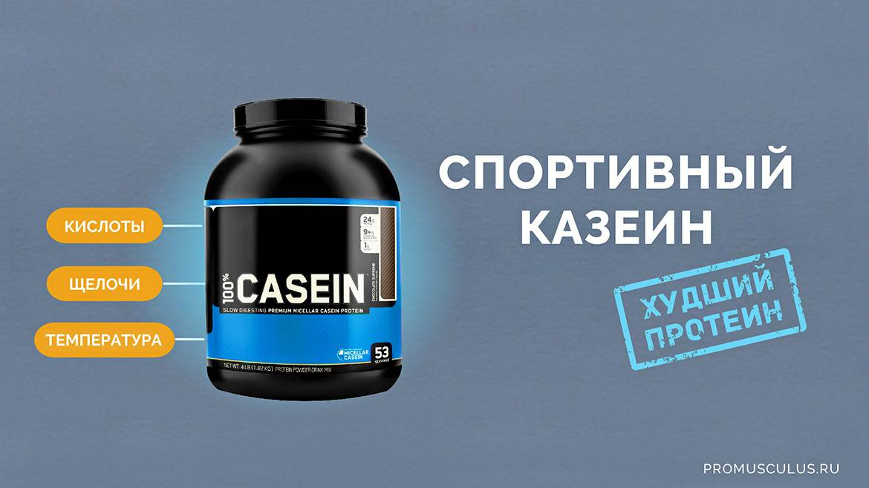 ✅ протеин польза и вред - vsezap24.ru