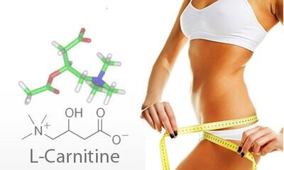 Как правильно принимать л-карнитин? инструкция по не применению   promusculus.ru
