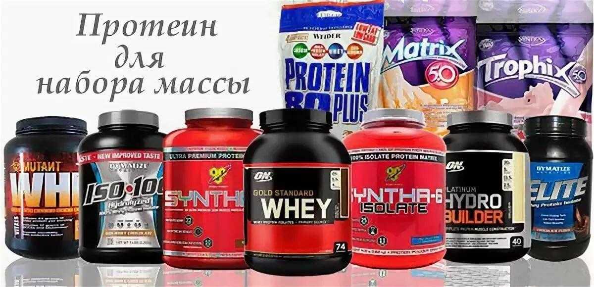 Способ применения протеина. виды протеина и цель применения - tony.ru