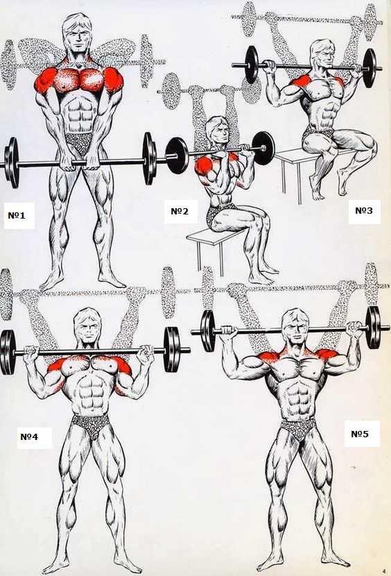 Как правильно тренировать трицепс: 10 упражнений и 6 тренировочных стратегий – зожник     как правильно тренировать трицепс: 10 упражнений и 6 тренировочных стратегий – зожник
