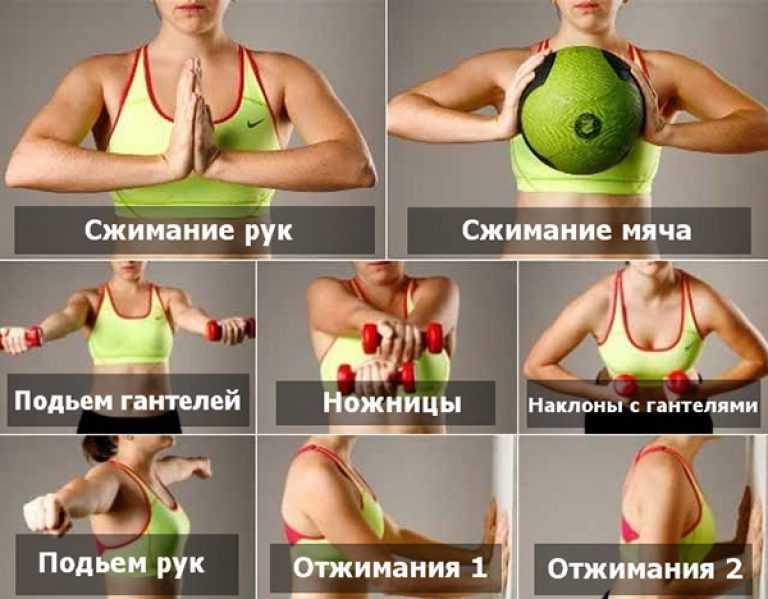 Как накачать грудь девушке дома: упражнения + ФОТО