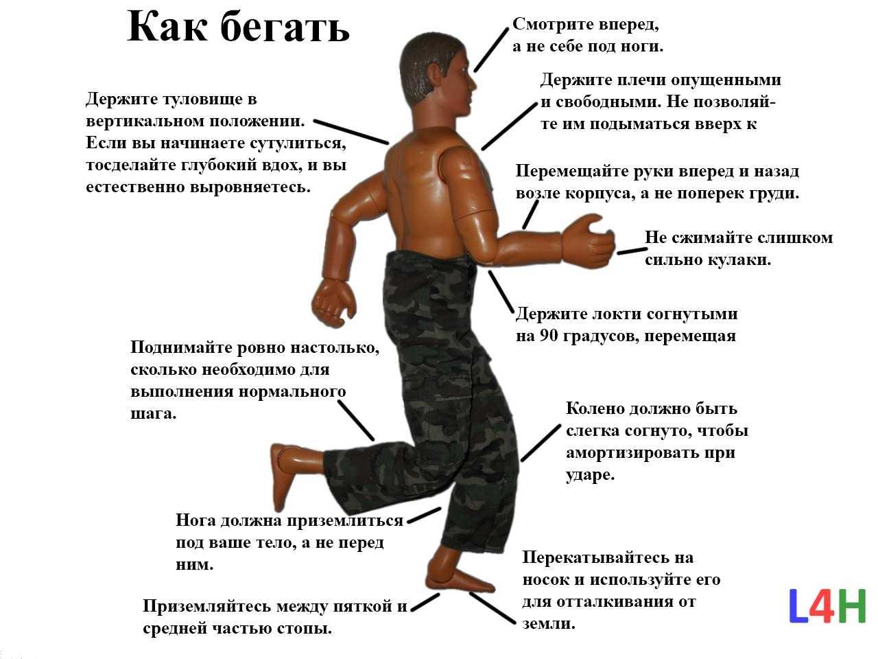 Бег: чем полезен, как правильно бегать, и что нужно знать начинающему бегуну? - жизнь в москве - молнет.ru