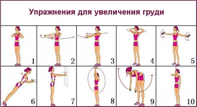 Упражнения на грудные мышцы в домашних условиях: особенности и программы тренировок