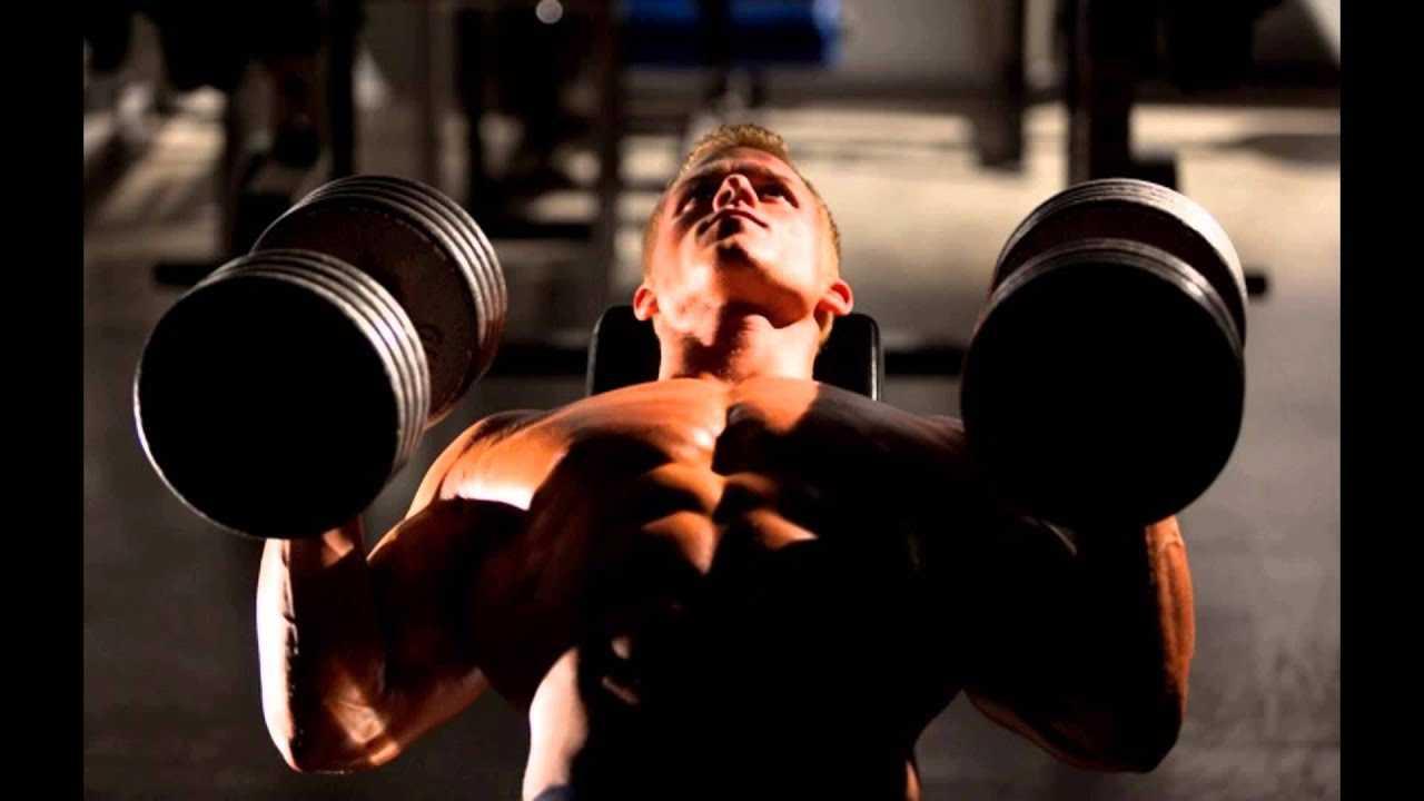 You are your own gym: короткие тренировки с весом собственного тела от марка лорена