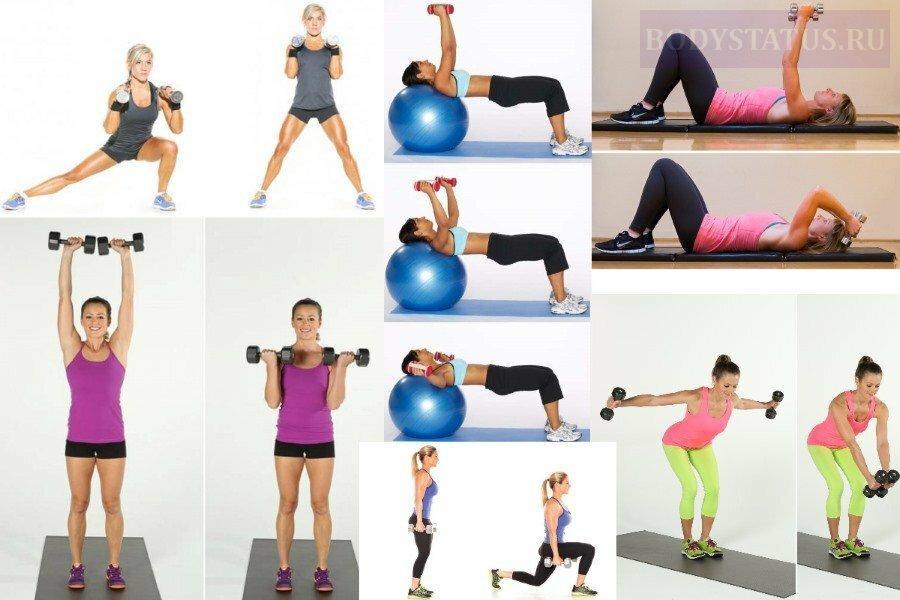 Силовые упражнения для девушек и женщин: лучшие программы тренировок и планы тренинга на силу