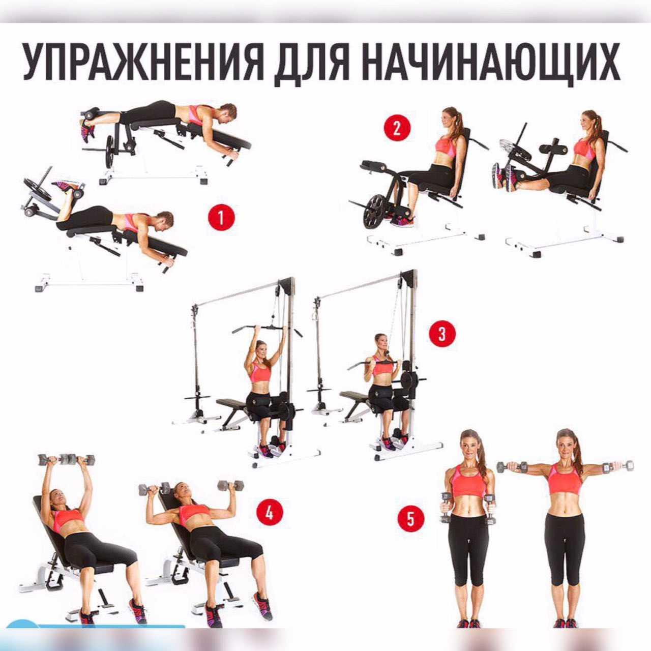 Оптимальная программа тренировок для похудения для девушек в тренажерном зале и правильное питание Комплекс упражнений, рассчитанный на быстрый результат