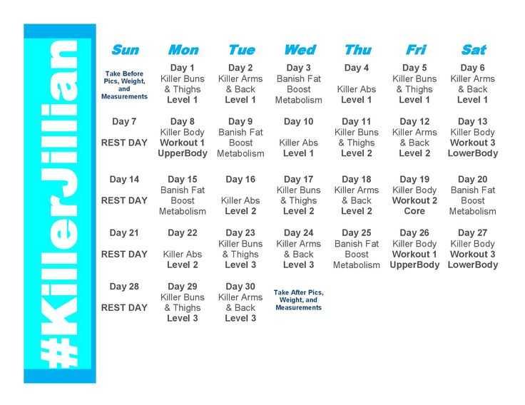 Джиллиан майклс: стройная фигура за 30 дней 1,2,3 уровень (30 day shred)