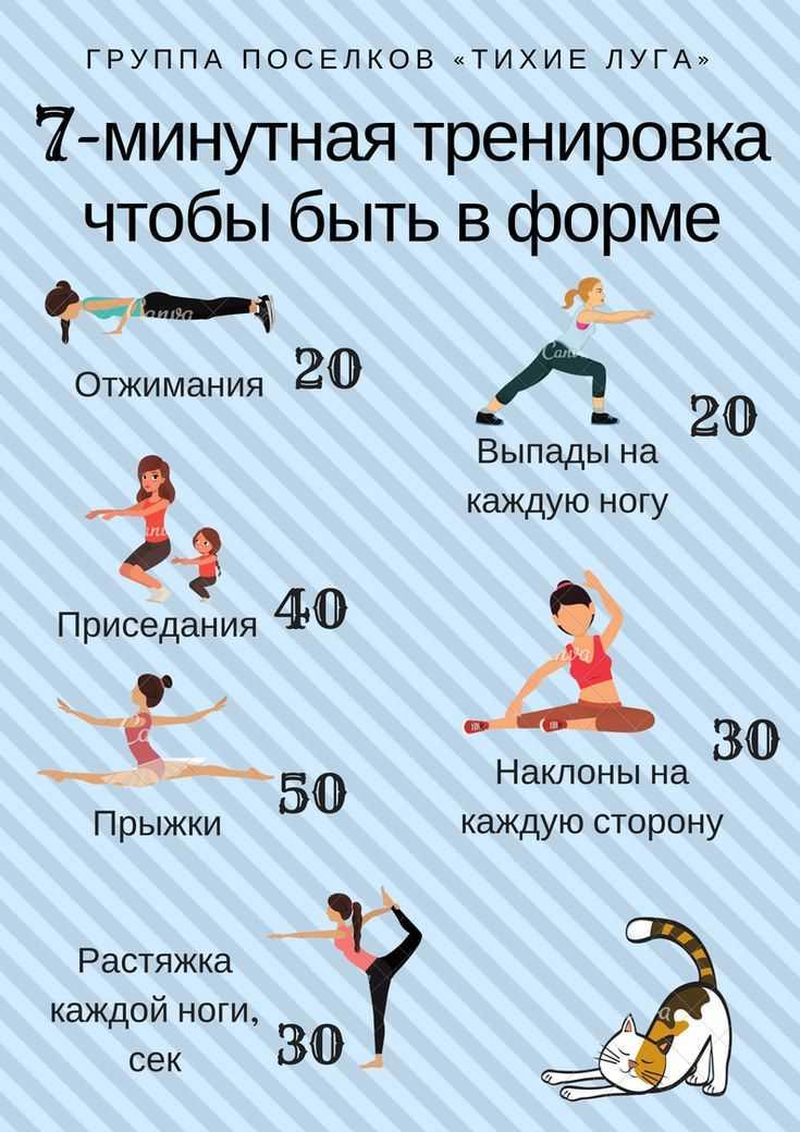 Силовые тренировки для мышц в домашних условиях с hasfit