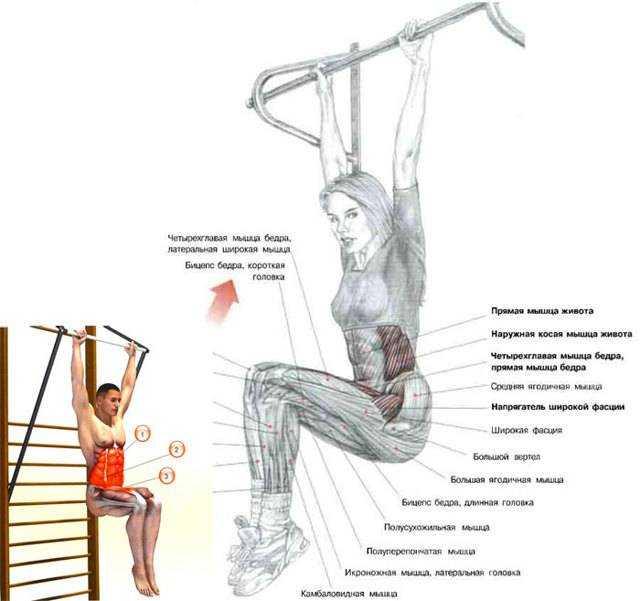 Подъем ног лежа – универсальное упражнение, которое подходит как для новичков, так и для опытных спортсменов Техника выполнения, вариации, частые ошибки